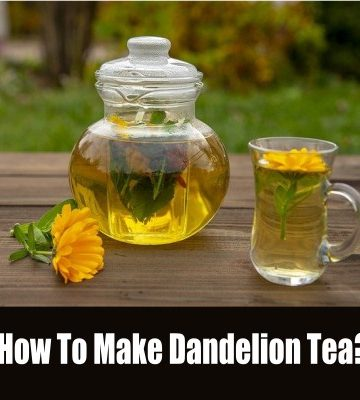dandelion tea - how to make dandelion tea