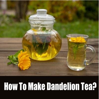 dandelion tea - how to make dandelion tea